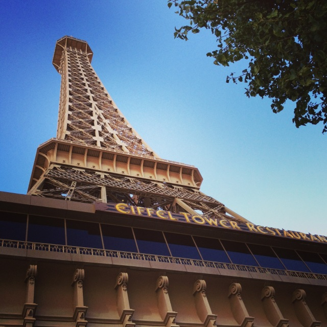 paris las vegas resort